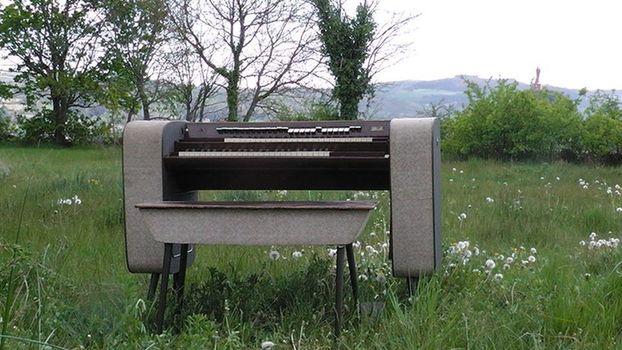 Bird Organ Model Contemporary Mark II
