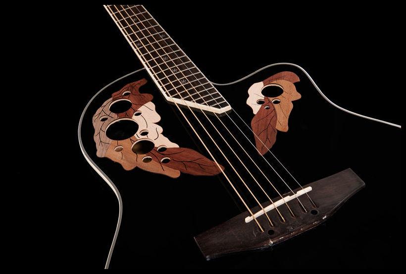 Harley benton te-40 tbk deluxe series electric guitar - Bride for