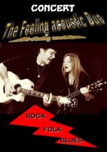 the feeling acoustic duo