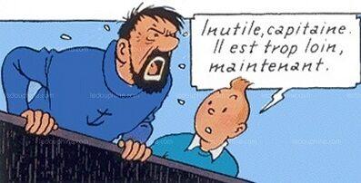 TintinHaddock2a.jpg
